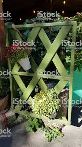 Rustic Wooden Fence Of Crossed Timber Planks Painted In Green Color With Hanging Flower Pots Of Blooming Chrysanthemum Bushes Autumn Sunny Day Stock Photo Download Image Now Istock