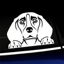 2020 15 10 7cm Peeking Beagle Cute Hound Dog Sticker Decal Car Accessories Cute And Interesting Fashion Sticker Decals From Xymy797 4 83 Dhgate Com