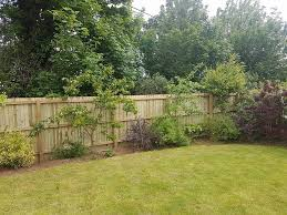 We Explain The Benefits Of Choosing A Feather Edge Garden Fence