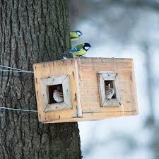 mangeoire ou un abreuvoir pour oiseaux