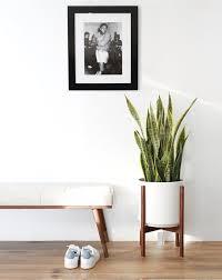 large mid century modern planter plant