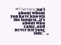 a collection of best broken friendship quotes sayings