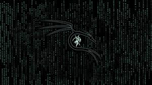 kali linux matrix 1366x768 resolution