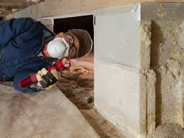 Download Ceiling Termite Nest In House PNG