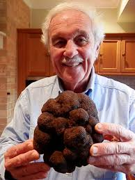 Ted Smith couldn't believe his eyes when he uncovered the record sized  truffle, June 2014 - ABC News (Australian Broadcasting Corporation)