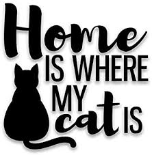 Amazon Com Home Is Where My Cat Is Vinyl Decal Sticker Cars Trucks Vans Suvs Walls Cups Laptops 5 5 Inch Decal Black Kcd2889b Automotive