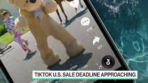 What Could Happen If Oracle Buys TikTok ...
