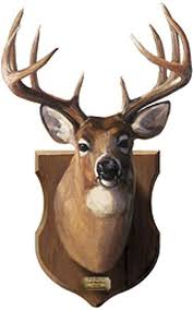 Deer Head Mount Peel And Stick Wall Mural