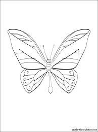 Kleurplaat Vlinder Gratis Kleurplaten