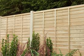 Buying Guide To Fencing Forest Garden