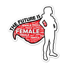 The Future Is Female Feminist Superhero Woman Girl Equality Car Sticker Decal Ebay