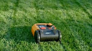 Best Robot Lawnmowers 2020 Never Cut The Grass Yourself Again