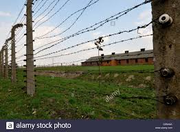 Electric Barbed Wire Fence High Resolution Stock Photography And Images Alamy