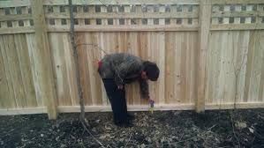 Question About Botched Fence Job Doityourself Com Community Forums