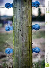 Electric Fence Contact Points Stock Photo Image Of Environment Wires 66725180