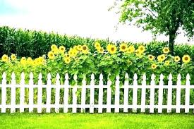 Fence For Small Yard Small Garden Fence Ideas Wanderinc Co