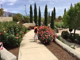 el paso munil rose garden april 5