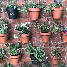 Garden Patio Fence Panels 6 Plant Pot Holders Hangers Fence Hook Rings Fence Panels Vertical Gardening Mtmstudioclub Com
