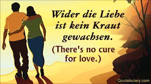popular german sayings about love quotabulary