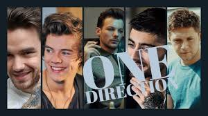one direction members names you