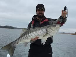 fishing reports lanierstriper