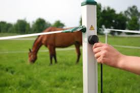 Why Electric Fencing Is Important For Livestock By Fairfield Supplies Ltd Medium