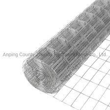 homedepot mesh 2x4 inch