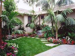 landscaping ideas front yard palm trees