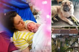Tragic baby pictured in mom's arms days before being mauled to death by dog