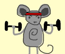 Image result for weight lifting mouse