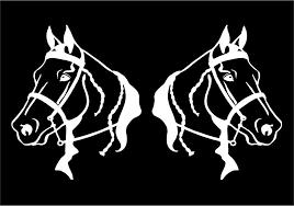 Gaited Horse Head Decal Equestrian Car Window Trailer Vinyl Sticker Graphic Other Equestrian