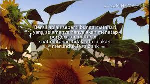 sholawat adfaita bunga matahari video islami story wa