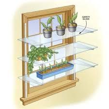 glass shelves for plants