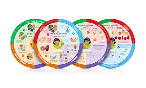 nutrition 9in placemat wheel