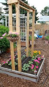 sy veggie garden trellis