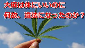 あさにゃん 🍁大麻解禁へ仲間募集💑 (@asanyan420z) | Twitter