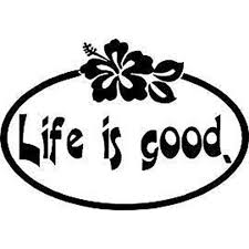 16x11cm Life Is Good Hibiscus Flowers Vinyl Sticker Decals Car Accessories Car Styling S8 0211 Car Accessories Decals Carvinyl Stickers Aliexpress