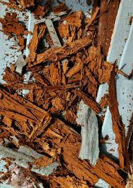 37+ Termite Deterrent Images