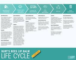 burt s bees lip balm design life cycle