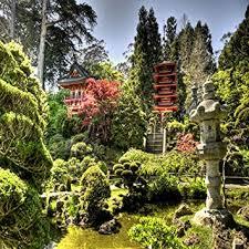 amazon anese garden live