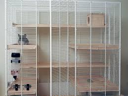 chinchilla cages infolific