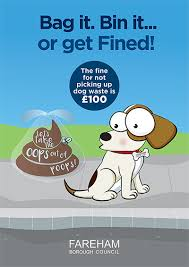 litter and dog fouling