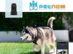Dr Tiger W01 Electric Dog Fence System Slash Pets