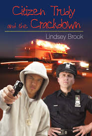 Citizen Trudy and the Crackdown: Amazon.co.uk: Abigail Reed, Reed, Lindsey  Brook, Brook: 9781440180705: Books