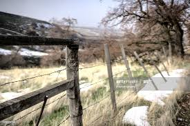 Wooden Fence Posts And Barbed Wire Fence High Res Stock Photo Getty Images