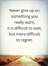 never give up quotes never give up on something you really want