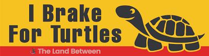 I Brake For Turtles Bumper
