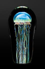 moon jellyfish medium by richard satava