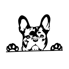 Frenchie Window Decal Frenchieuniverse1