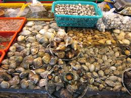 sfish oysters clams mussels